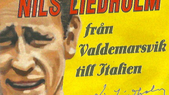 premio liedholm brochure